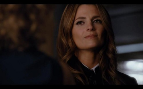 Kate Beckett پیپر وال with a portrait called Katherine Beckett