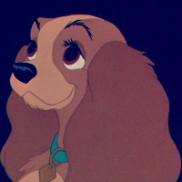 Lady And The Tramp Icon Classic Disney Icon 32181545 Fanpop