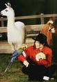 MJ and animal - michael-jackson photo