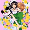 Maid Sama - mirafabia photo
