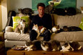 Matthew and a bunch of cats - matthew-perry photo