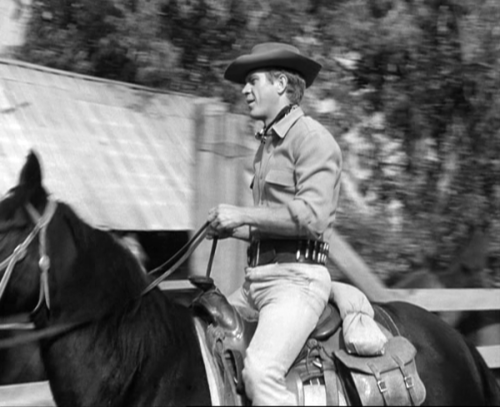 Steve McQueen wallpaper containing a horse wrangler, a horse trail, and a saddle horse titled McQueen