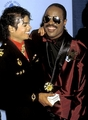 Michael and Stevie - michael-jackson photo