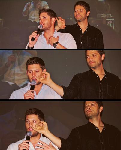 Misha & Jensen - Personal o espaço