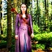 Pevensies - the-chronicles-of-narnia icon