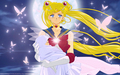 Sailor Moon and Hotaru