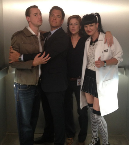 Sean Murray, Michael Weatherly, Diane Neal and Pauley Perrette in NCIS elevator