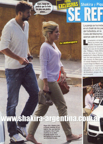 Shakira is expecting a baby with Gerard Pique...