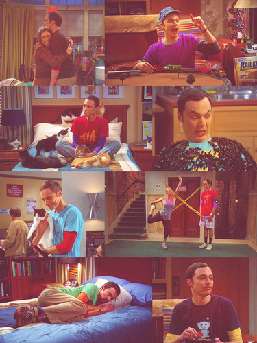 Sheldon Cooper wallpaper probably with a reading room called Sheldon