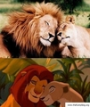 Simba-Nala - lion-king-couples photo