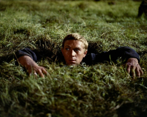 Steve Mcqueen Images The Great Escape Wallpaper And Background