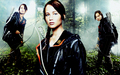 The Hunger Games - the-hunger-games-movie wallpaper