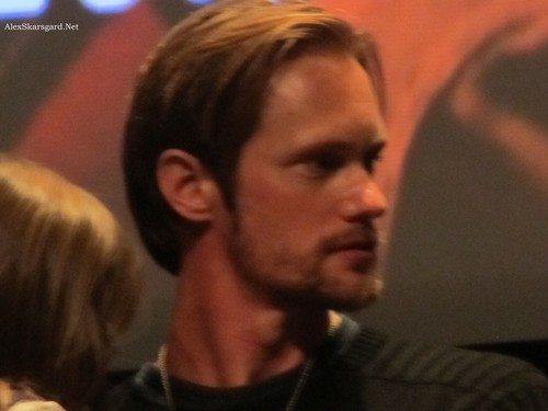 Alexander Skarsgård 壁纸 possibly containing a concert, a guitarist, and a portrait titled What Maisie Knew Q&A at TIFF