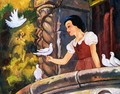 disney - snow-white-and-the-seven-dwarfs photo