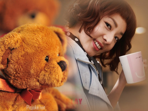 teddy 熊 dara