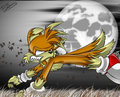 tails the werefox - tails-the-werefox photo