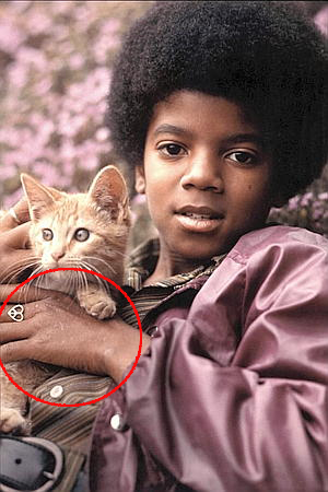 michael jackson wallpaper with a kitten, a tom, and a cat titled || The Vitiligo Proof ||