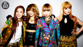 2NE1 MTV Iggy photoshoot - 2ne1 photo