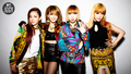 2NE1 MTV Iggy photoshoot