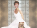 audrey-hepburn - Audrey & friend wallpaper