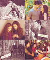 Breaking Dawn part 2 - team-twilight photo