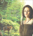 Bring me her Heart - snow-white-and-the-huntsman photo