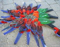 CRIMSON ROSELLAS AND KING PARROTS. - australia photo