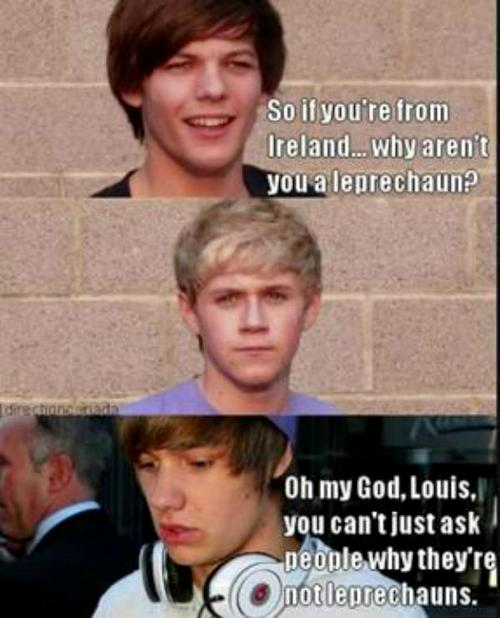 One Direction Funny 1D