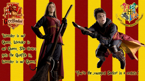 Gryffindor's nyota Quidditch Couple