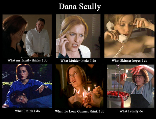The X-Files wallpaper titled HAHA Dana Scully meme XD