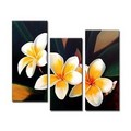 Happy Flowers Oil Painting - Set of 3 - Free Shipping