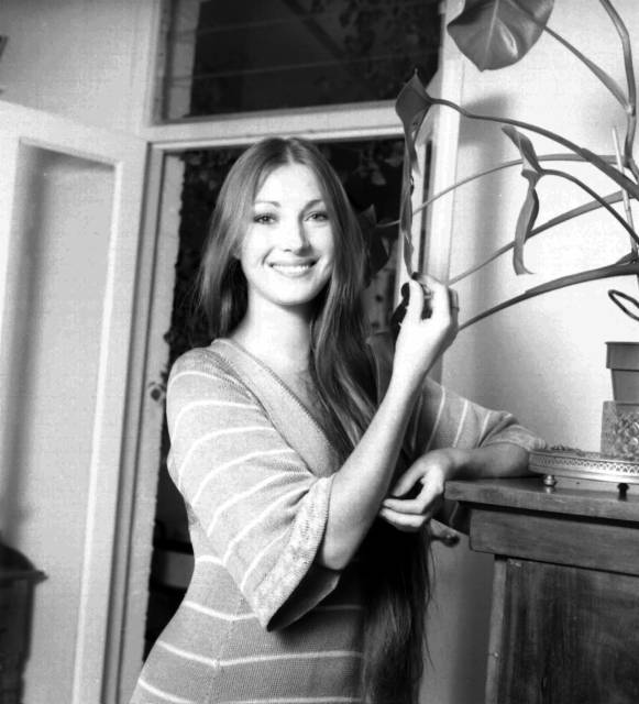 5395 additionally Gallery 2 also Ciramos likewise Jaclyn Hill also Jane Seymour Photo. on fan on house