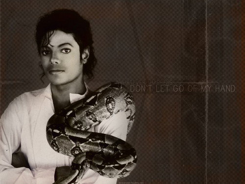 Michael Jackson wallpaper containing a boa and a constrictor entitled Michael Jackson ♥♥