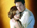Mulder & Scully  - mulder-and-scully wallpaper