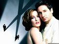 Mulder &amp; Scully  - mulder-and-scully wallpaper
