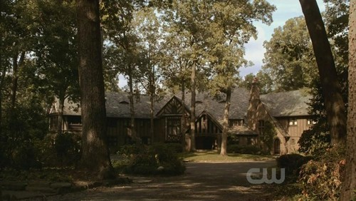 Mystic falls wallpaper containing a live oak, a beech, and a lychgate called Mystic Falls