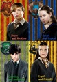 Narnia siblings sorted on Harry Potter houses