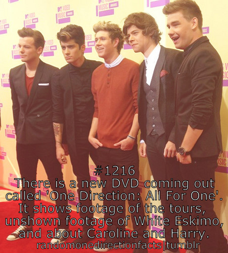 New Facts :) ♥