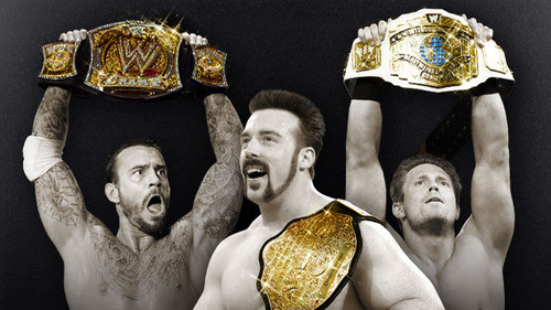 WWE wallpaper entitled Night Of The Champions!