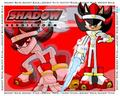 shadow heroic form - shadow-the-hedgehog photo