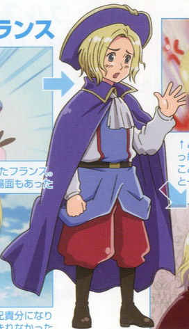 Official France Art - hetalia Photo