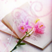 Pretty Icons For My Fairy Sister - yorkshire_rose icon