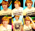 Rupert - rupert-grint photo