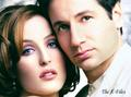 Scully and Mulder beautiful pic <3