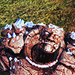 Shale - dragon-age-origins icon