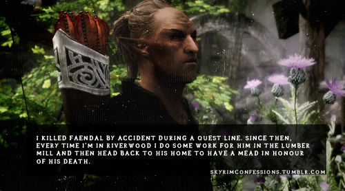 Elder Scrolls V : Skyrim wallpaper possibly with a sign titled Skyrim Confessions