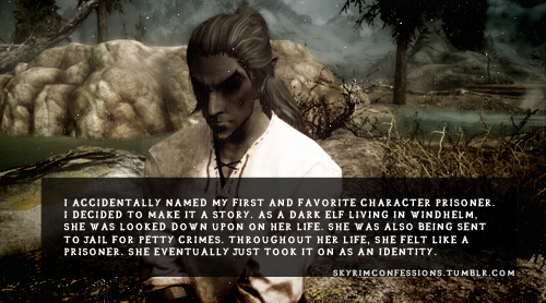 Elder Scrolls V : Skyrim wallpaper possibly with a sign and a portrait entitled Skyrim Confessions