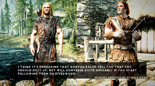 Elder Scrolls V : Skyrim wallpaper probably with a green beret, a surcoat, and a tabard titled Skyrim Confessions