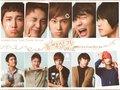 TVXQ wallpaper
