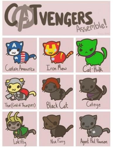 The Catvengers